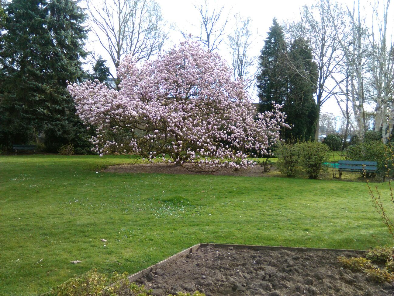 Fotoreportage – Floralia Park